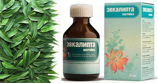 Настойка из листьев эвкалипта для полоскания горла: рецепты и советы по применению
