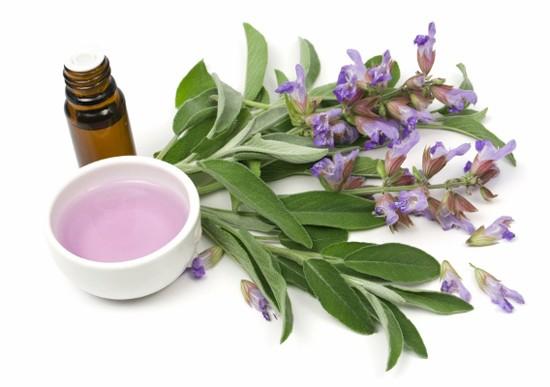 Полоскание раствором шалфея может быть эффективно при лечении аллергического фарингита