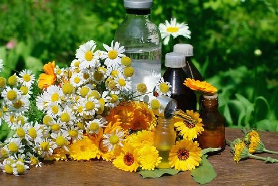 Растительный препарат Ротокан инструкция по применению